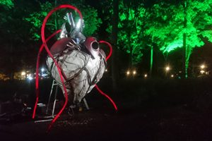 Heart of the Forest sculpture partially lit up at night amongst trees.