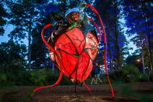 Heart of the Forest sculpture lit up at dawn amongst trees.