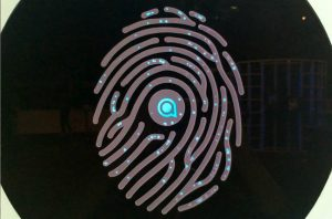 Digital Fingerprint by Studio Meno